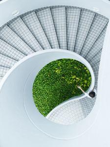 Des plantes et des courbes douces : espace zen et Feng shui
