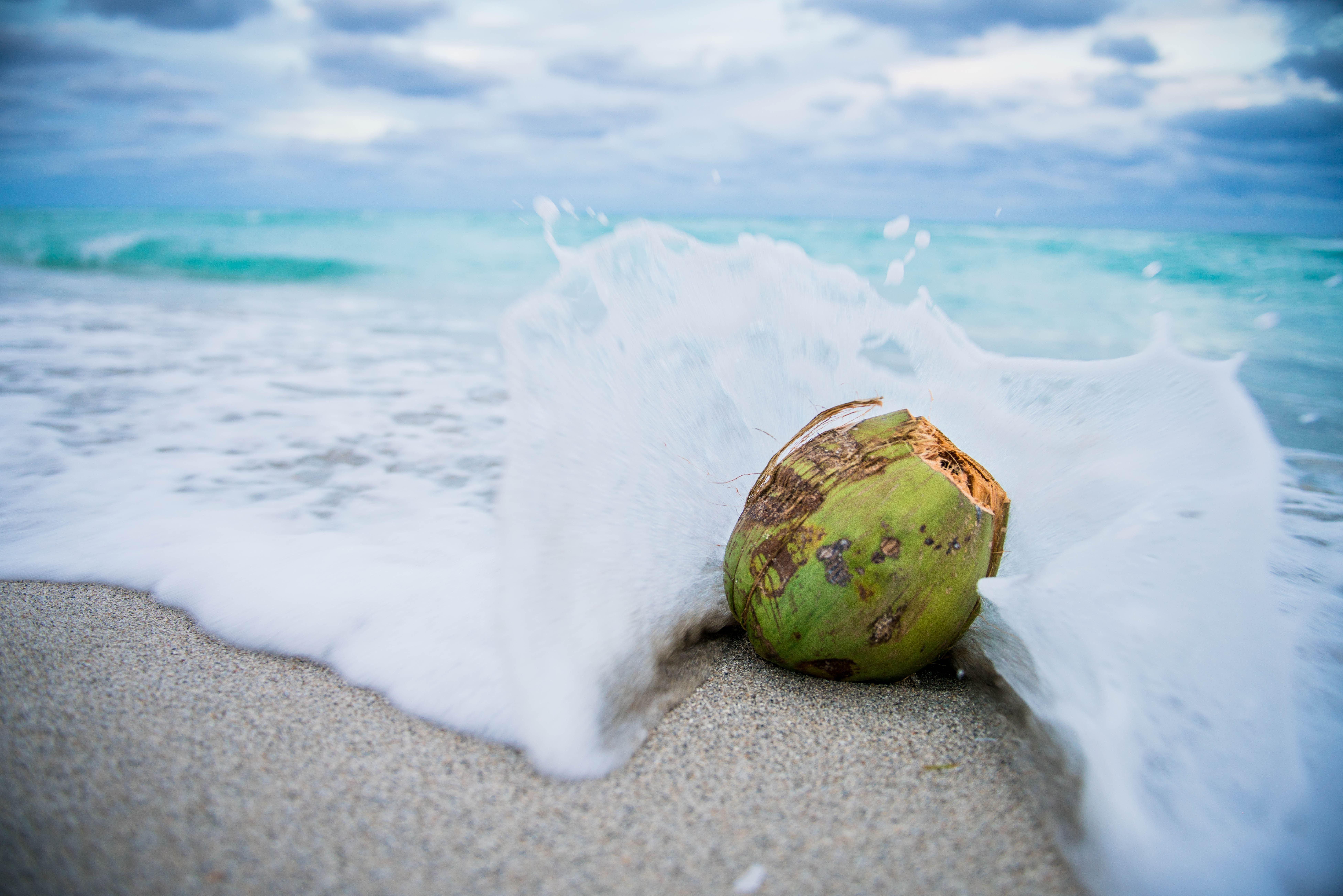 La noix de coco fait des merveilles