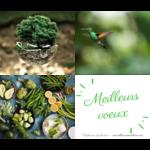 2019 avec Stéphanie Guiberteau, créatrice de la méthode Merveilleusement bien